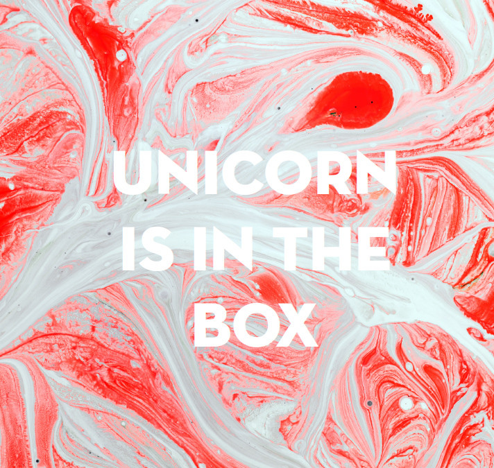 BERLIN FASHION WEEK_fashion exhibition 'Unicorn is in the box' catalog