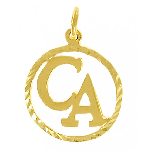Cocaine Anonymous 14k Gold Pendant (Style #282-16)