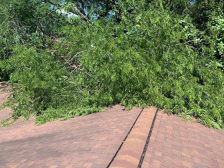storm damage 2.jpg