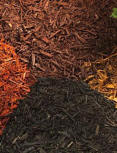 colors mulch.JPG