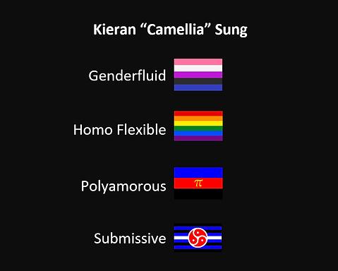 kieranflags2.png