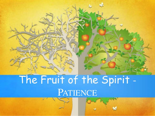 Foundations:  Grow in Faith – Patience, the Achilles heel of Faith