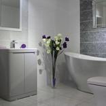 Bathroom showroom purple