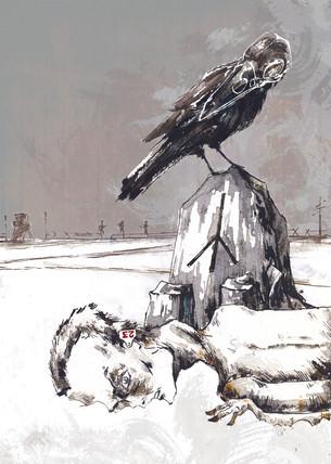 Raven_skull.jpg