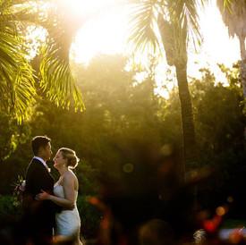 Newlyewds Sunset through Palm Trees