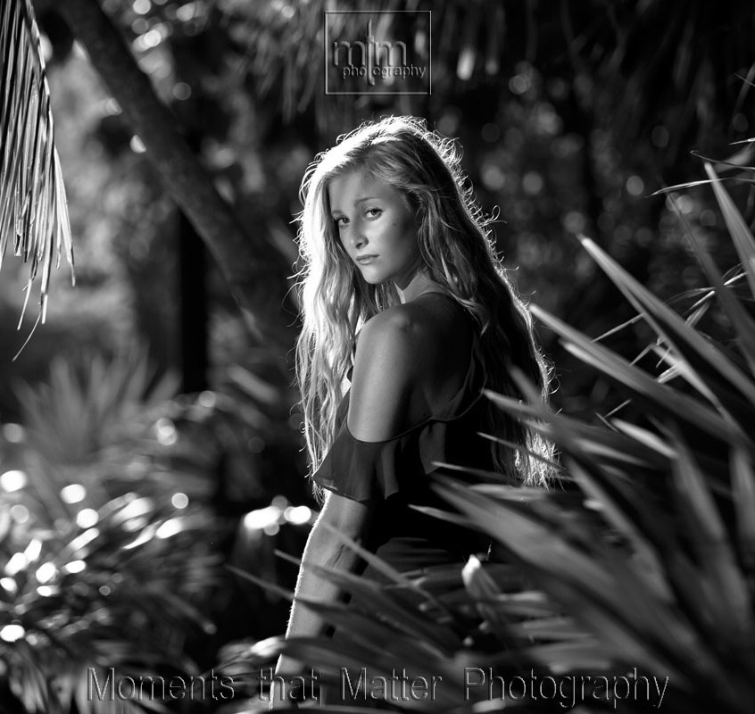 black and white picture in the jungle