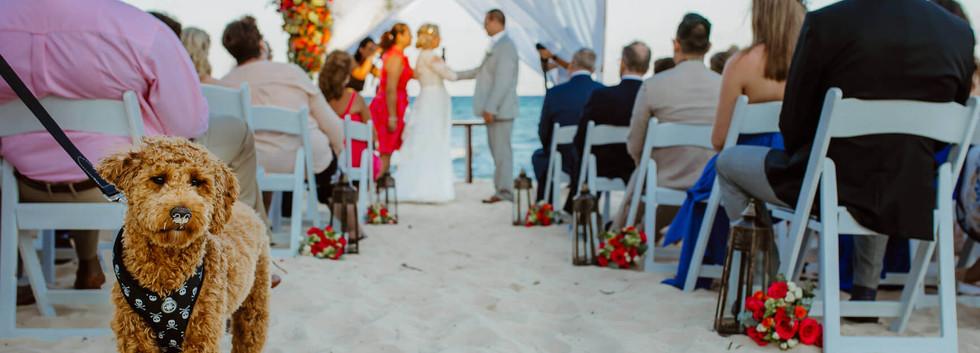 Gonzalo Wedding Photography_13.jpg