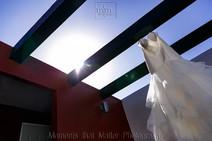 Wedding Dress on the rooftop at Hard Rock Riviera Maya