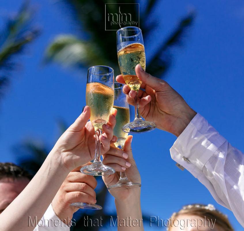 Wedding celebration toast.