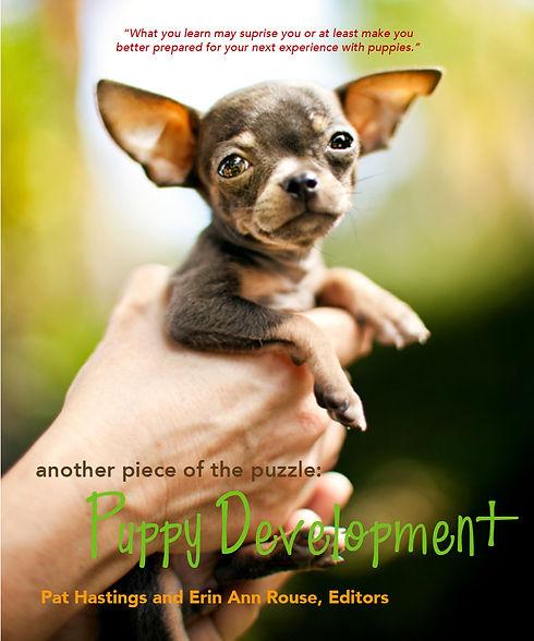 PuppyDevelop Alternative Cover 2021.jpg