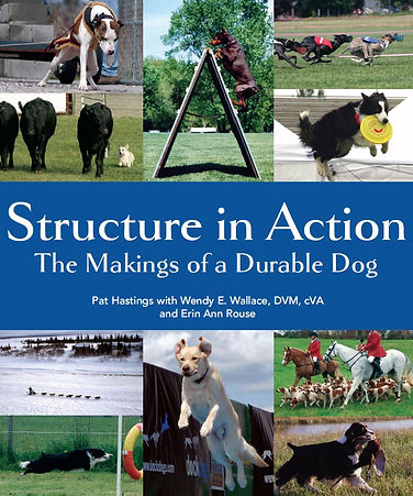 Structure Cover.jpg