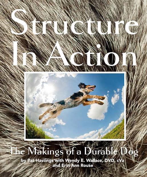 Sturcture Alternative Cover 2021.jpg