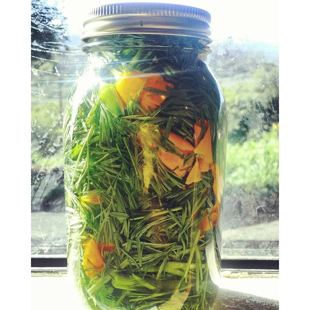 I'm wondering if taking this California poppy tincture is going to be like drinking liquid Californi