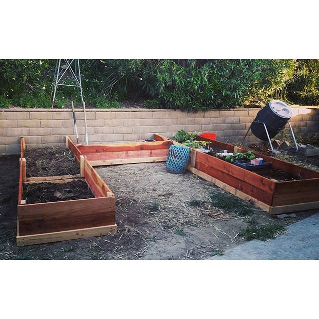 Front yard raised beds 2.0 completed! This will be experimental