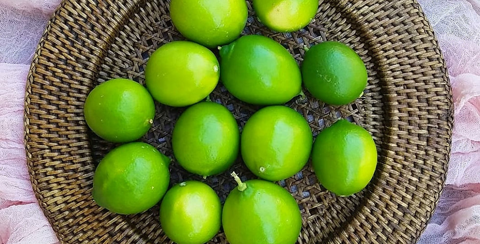 Bearss Lime