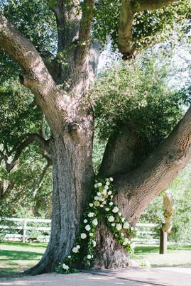 KaseyandDerek-Married-25.jpg