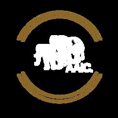 AAIC LOGO 2020 (1).png