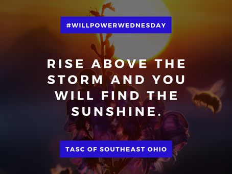 Willpower Wednesday - 1/6/2021