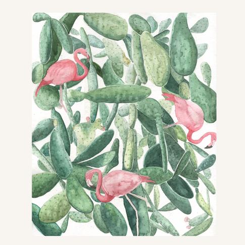 Cactus with flamingos