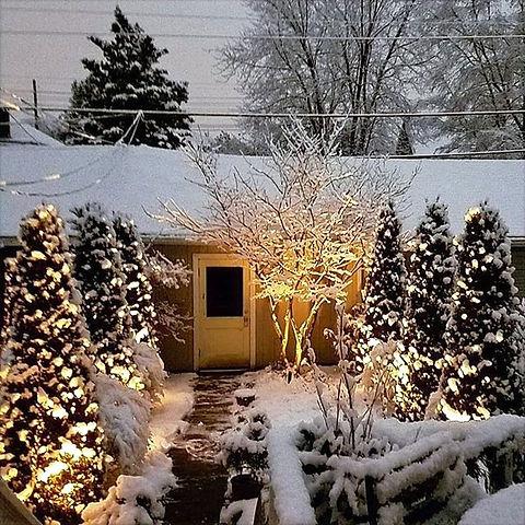 Snow%20garden_edited.jpg