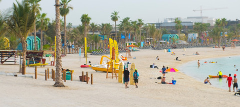 lamer-beach-banner.jpg