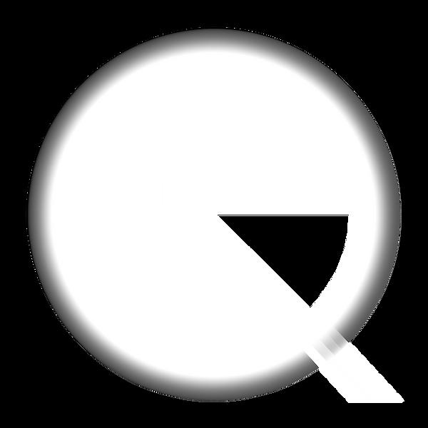 419Q Logo.png