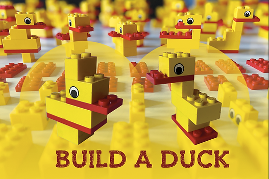 Build a Duck.png