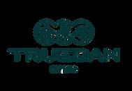 truedan logo2.png