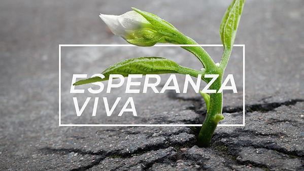 Esperanza Viva-Comp-3 (1).jpg
