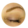 soft powde fill brows