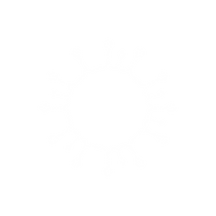noun_coronavirus_3385797.png
