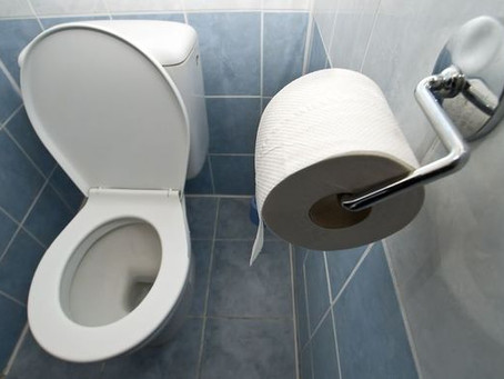 NZ's inadequate hygiene in public toilets flagged by health experts