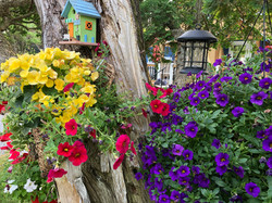 Domaine fleurie