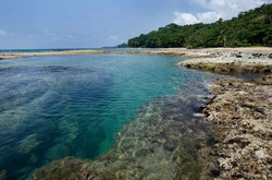Amazing Snorkeling Spot