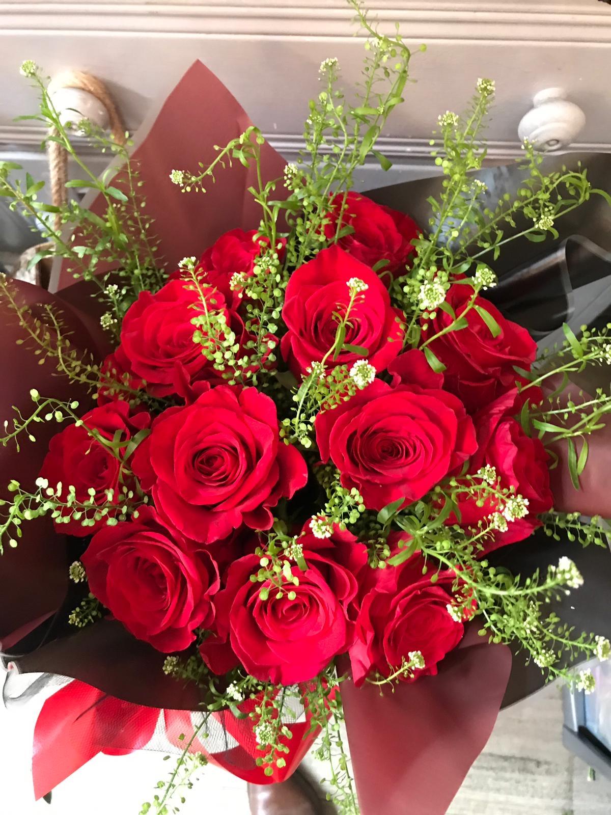 Special Valentines aqua