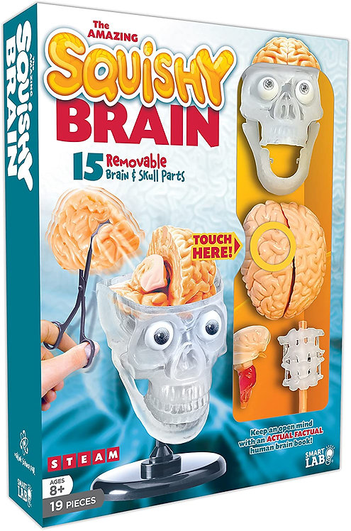 The Amazing Squishy Brain | SmartLabs Toys
