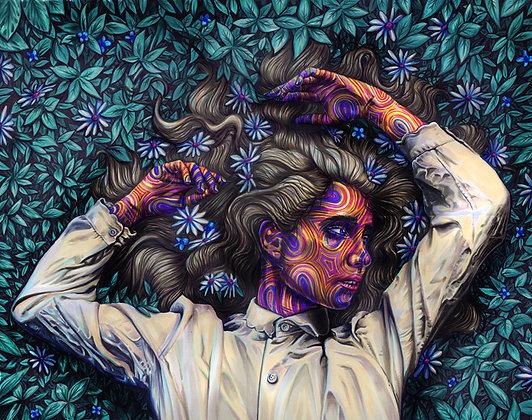"Joshua Roman ""Wild Flowers"""