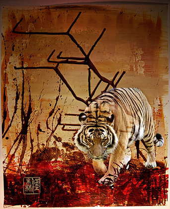 "Eric L Hansen ""Tiger in Blood Field"""