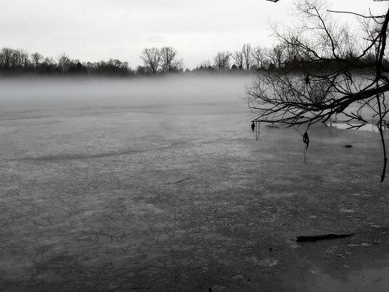 Gray Haze #1