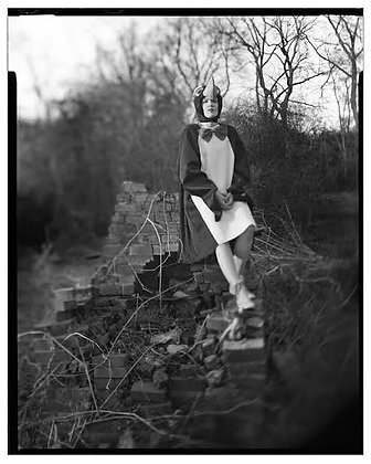 "Joshua Black Wilkins ""Penguin #2"""
