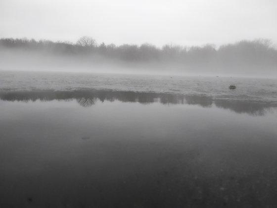 Gray Haze #7