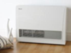 Rinnai Energy Saver 559FTR