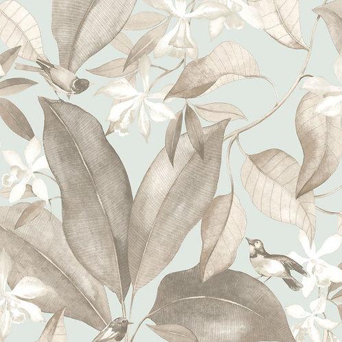 CASADECO - DELICACY - BIRDSONG BLEU/TAUPE DELY85442261