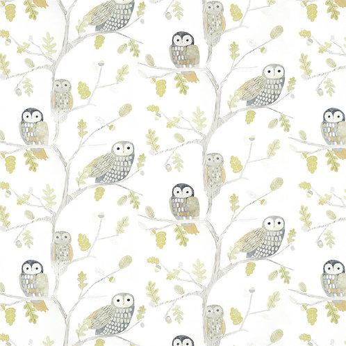 HARLEQUIN - BOOK OF LITTLE TREASURES - LITTLE OWLS 112627 KIWI