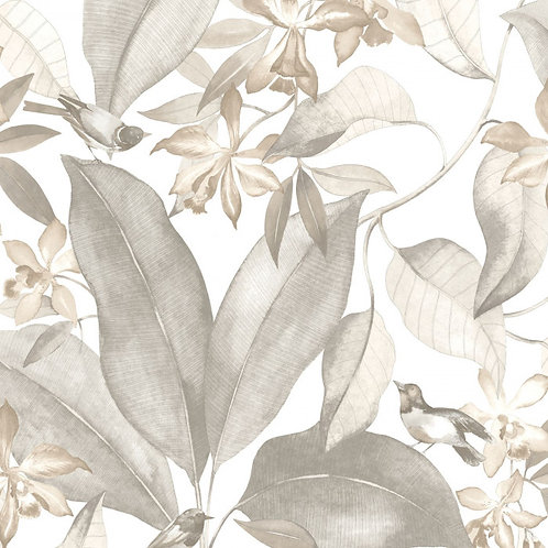 CASADECO - DELICACY - BIRDSONG TAUPE/GRIS DELY85449242