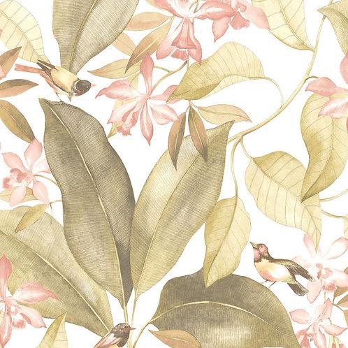 CASADECO - DELICACY - BIRDSONG VERT/ROSE DELY85447103
