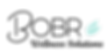 BOBR Logo_edited.png