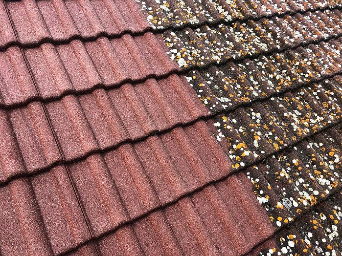 Buchlovice střecha 1.jpg
