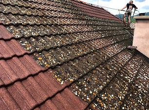 Buchlovice střecha.jpg
