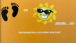 Sunshine Cleaning pic.png
